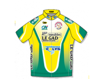 maillot VSD 2011.png